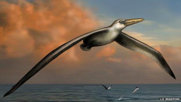 giant_bird