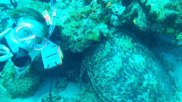Angee Doerr marine ecologist